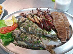 fish-plate